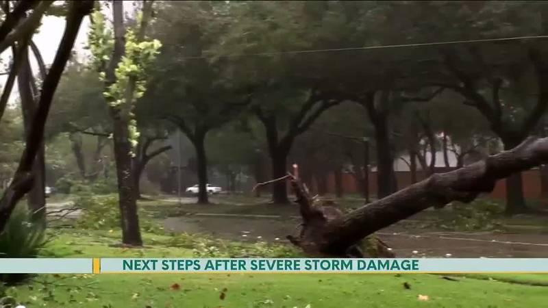 Next Steps After Severe Storm Damage