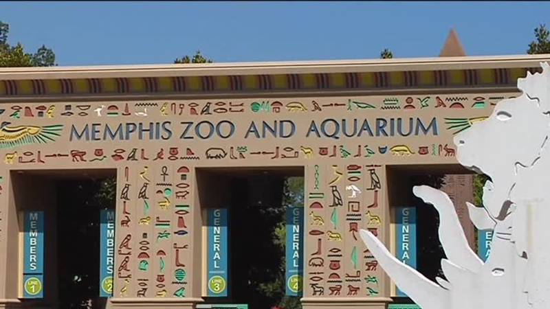 Visit the Memphis Zoo for free.