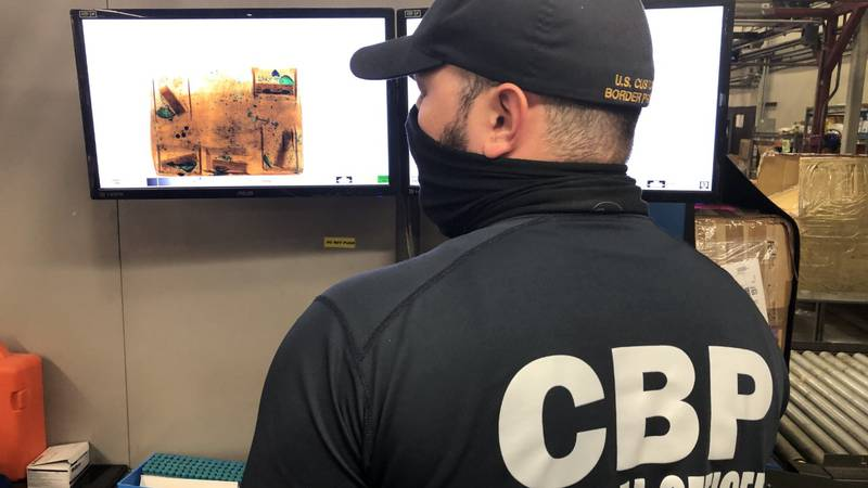 U.S. Customs and Border Protection (CBP) agriculture specialists