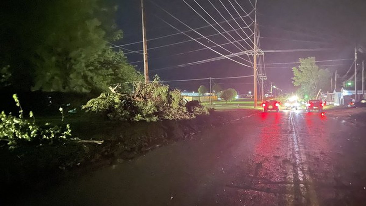 There are trees down on Mockingbird Lane morning, some hitting near power lines.