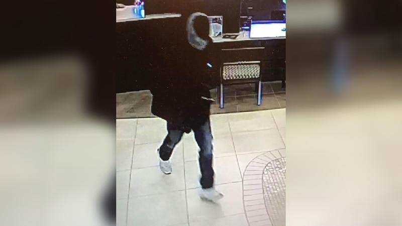 Hernando bank robbery suspect