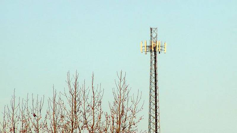 The closest cell phone tower to the family's Hardin County is in Jefferson County, which routed...