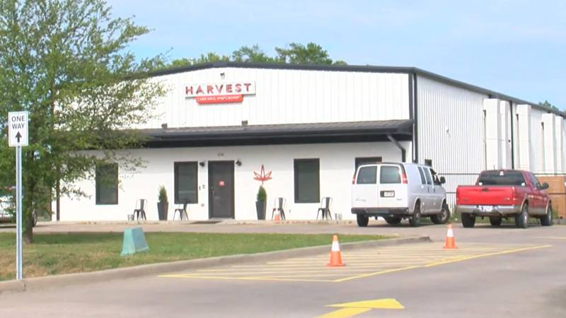 Samantha Wise told claims Harvest Cannabis Dispensary in Conway terminated her employment on...