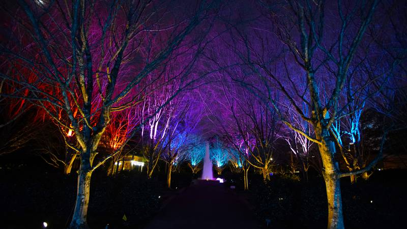 Holiday Wonders at the Garden at the Memphis Botanic Garden, Memphis, Tennessee.  (Photo by...