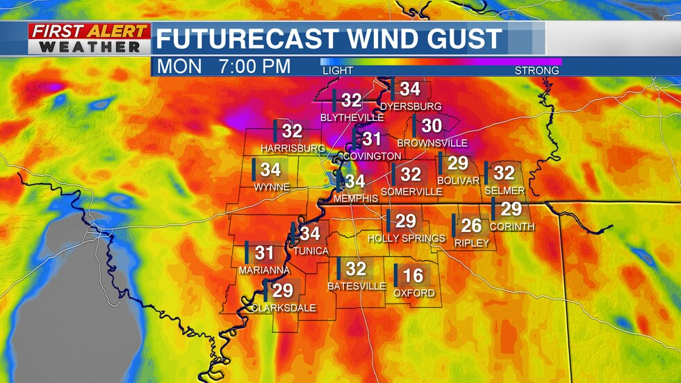 Wind gust from TD Cristobal
