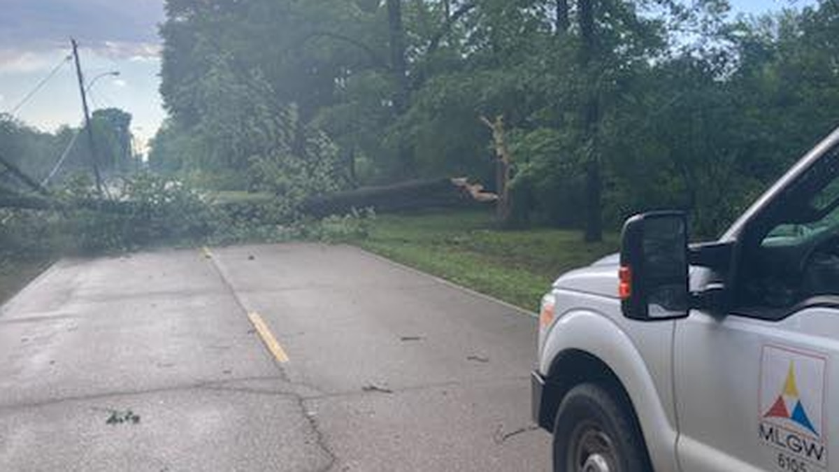 Storms in the Mid-South causes power outages and downed trees