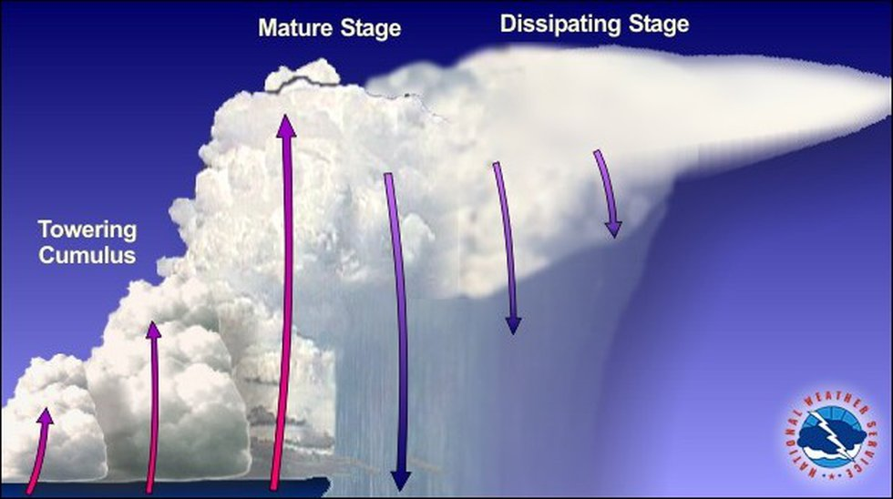 """In the developing stage, rising air called """"updrafts"""" are dominant in this stage and towering..."""
