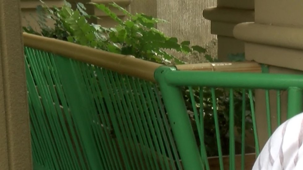 Visitors contacted Memphis Zoo security when a woman jumped the barrier into the lions'...