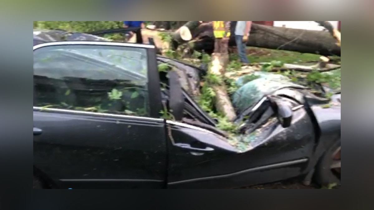Tree crashes on top of car during possible tornado