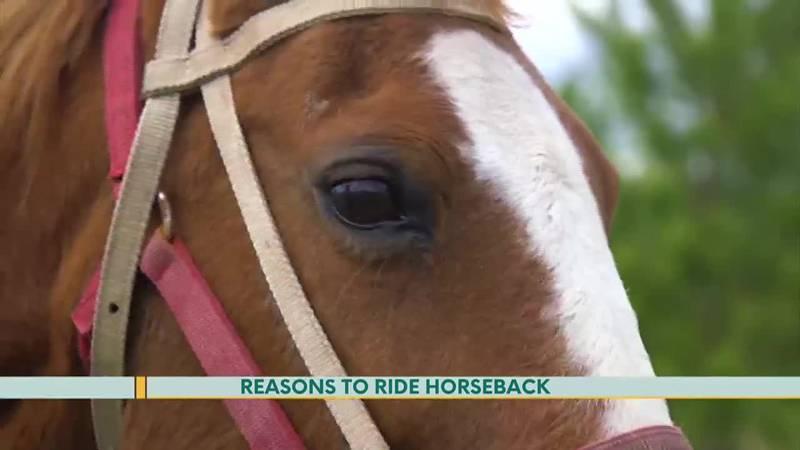 Reasons to Ride Horseback
