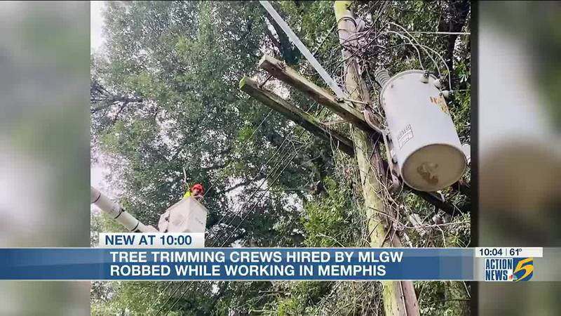 Tree trimming crews hired by MLGW robbed while working in Memphis