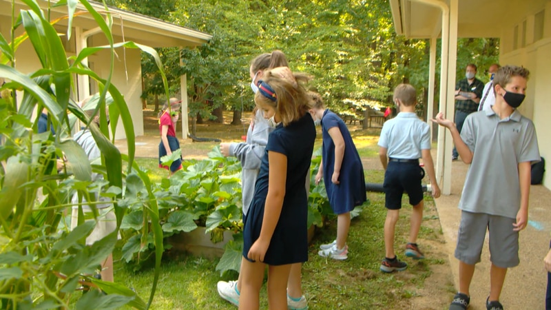 School in Germantown helps kids learn art histiry and science with garden.