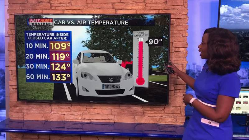 Breakdown: Why heat inside the car can be dangerous