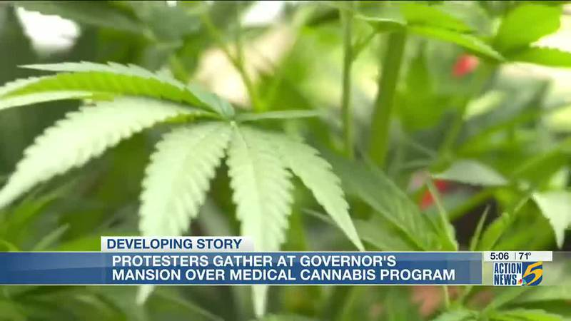 Medical cannabis advocates protest outside Mississippi governor's mansion